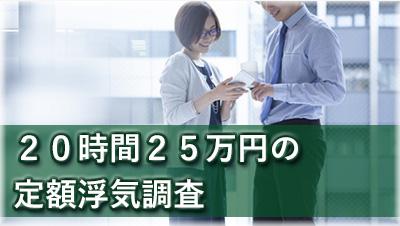 探偵大垣 浮気調査大垣 20時間25万円の定額浮気調査