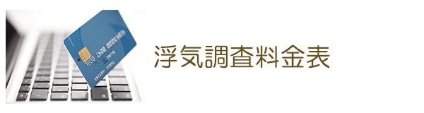 探偵大垣 浮気調査料金表